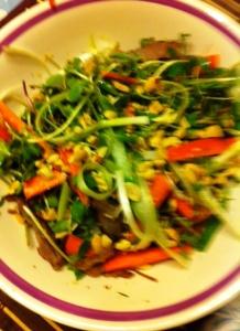 Vietnamese Duck Salad